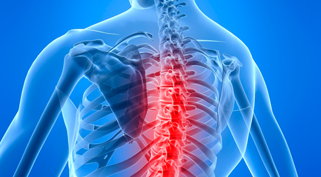Chiropractic Medical Billing and Coding Services in Florida, USA
